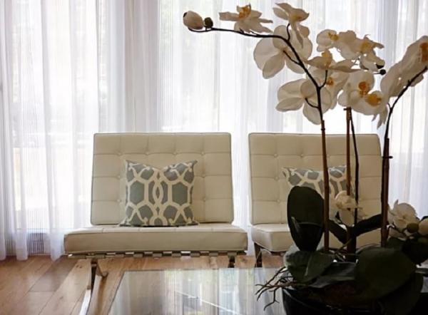 орхидеи в спальне3